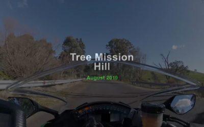 Tree Mission Hill