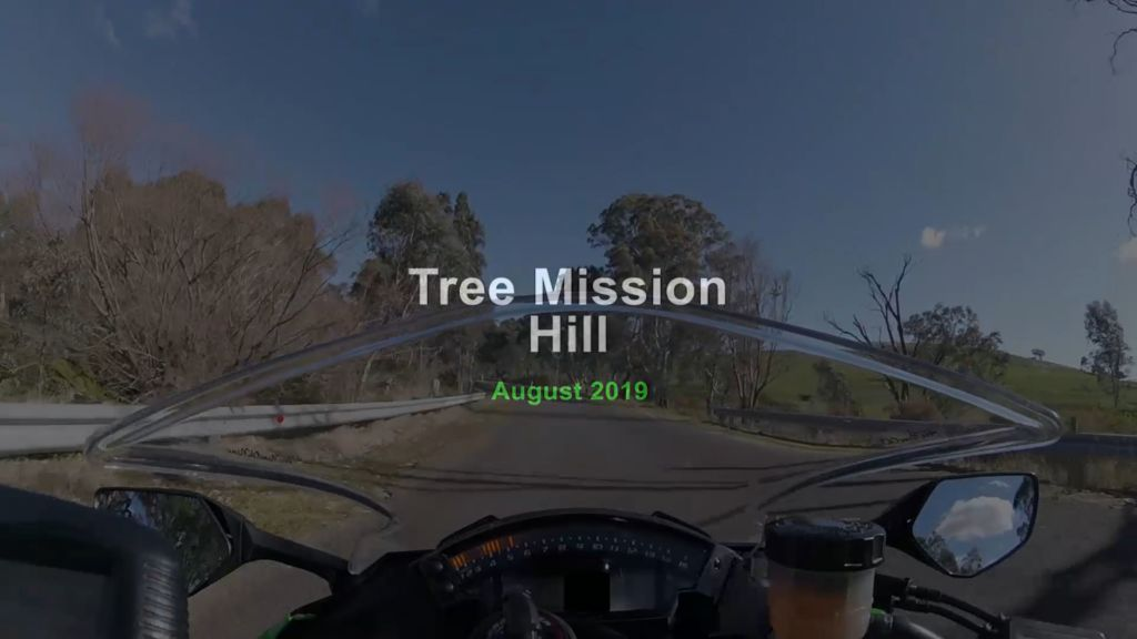 Tree Mission Hill